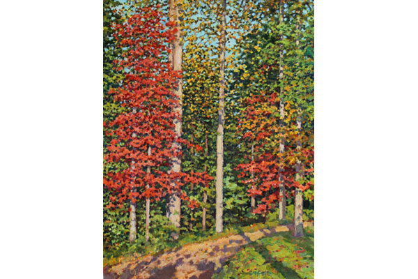 """Autumn Leaves"" <br />16x12"" oil - available - #1621 <br /> Maples!  Ah, maples."